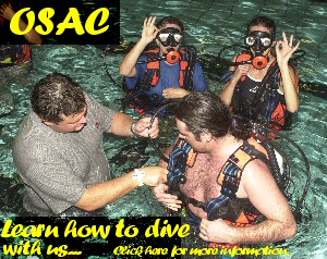 Learn To Dive With OSAC the BSAC way!